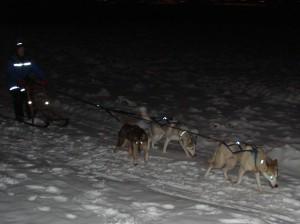 tre-hunder-og-spark