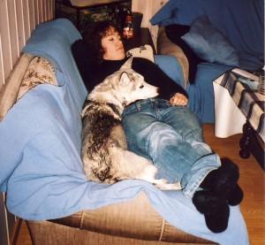 «Når skal menneskene mine skjønne at dette er sånn jeg vil ha det?» Artikkelforfatteren påpeker forøvrig at det er flere år siden dette bildet ble tatt, og at hunder ikke lenger har adgang til sofaen..!