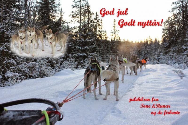 julekort2015