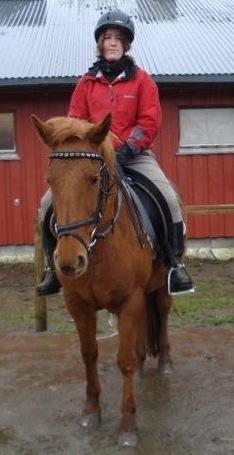Tone på hest