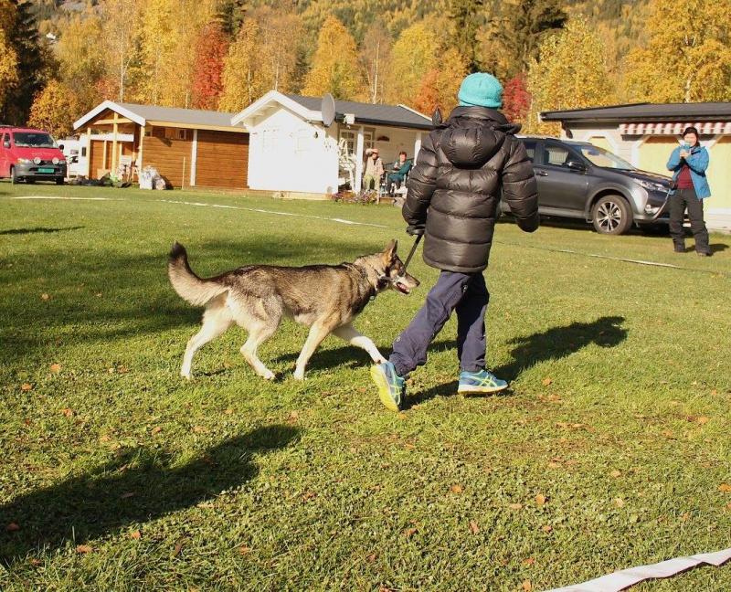 Barn og hund. Zima og Jan