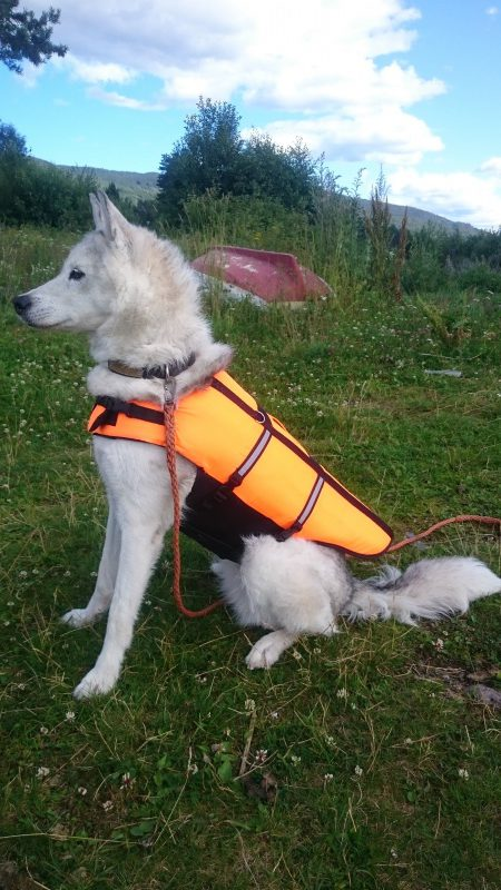 Nala klar for kanotur